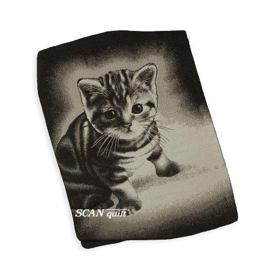 SCANquilt - pléd VELUR STYLE kitty 150 x 200 cm - Atraktivní plédy a přehozy